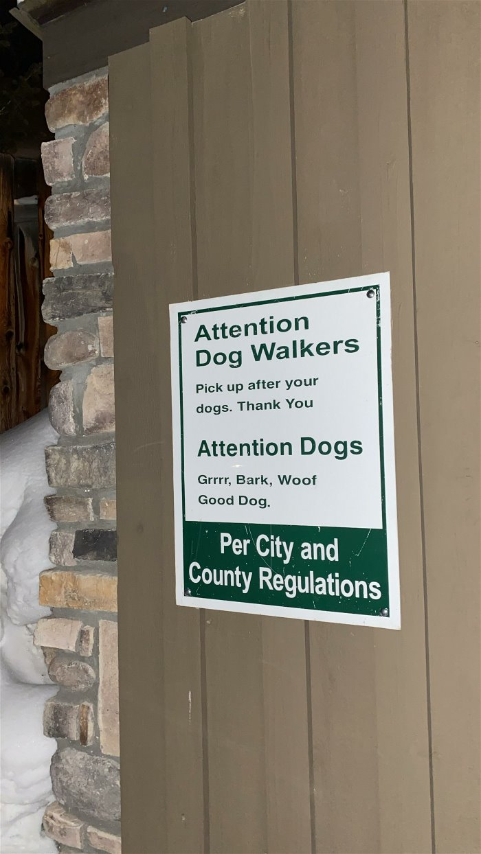 attention-dog-walkers