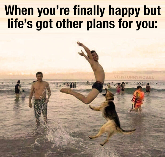 funny-pictures-when-youre-finally-happy-700x665