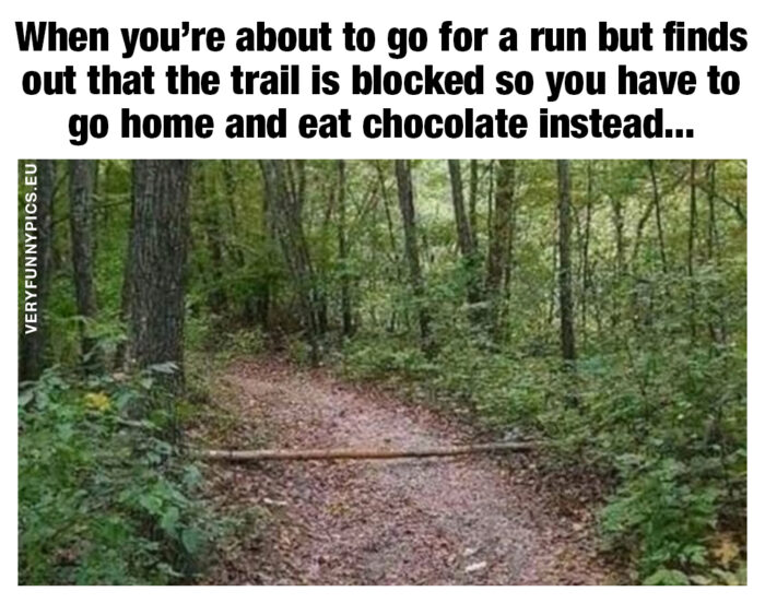 funny-pictures-going-for-a-run-700x552