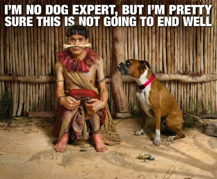 funny-pictures-im-no-dog-expert-700x580